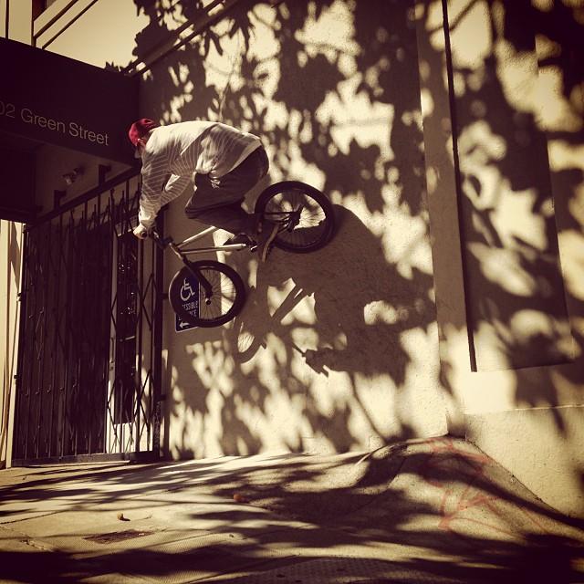 Fall @dewtour Hoogerhyde @skapegoat256 @animalbikes @skavengerbmx