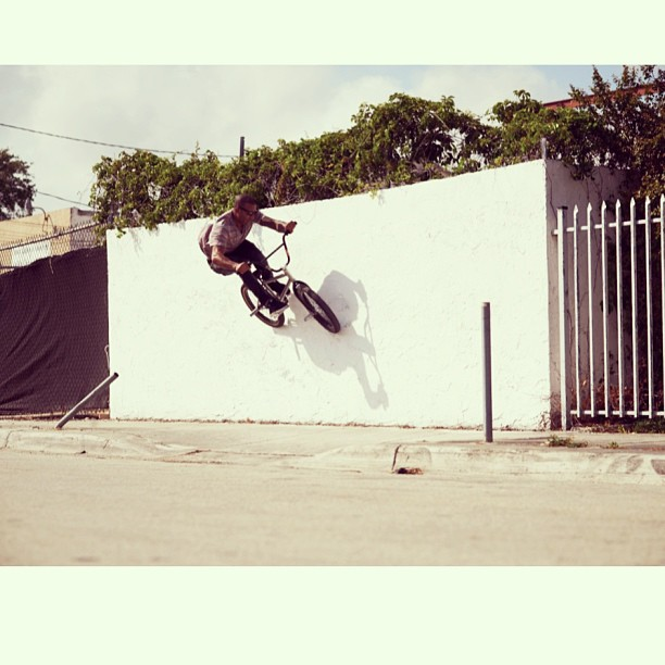 Go check the all new www.almondfootwear.com site out. The whole new line is up.