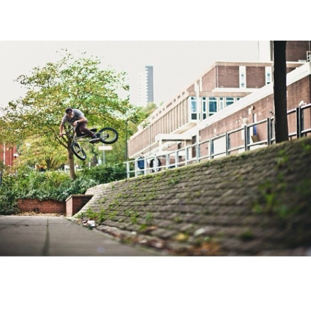 @seanbroth hoppy hop hop by @joe_bailey_photo