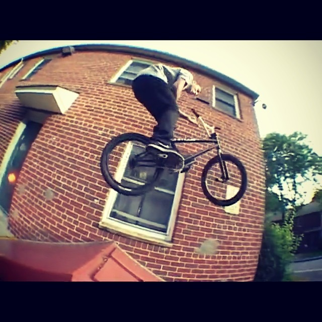 Go to Animalbikes.com right now the price is still wrong get it for free. Qss6 @animalbikes