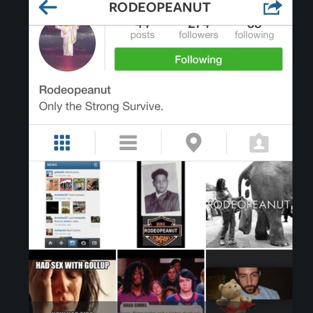 The best thing on Instagram @rodeopeanut