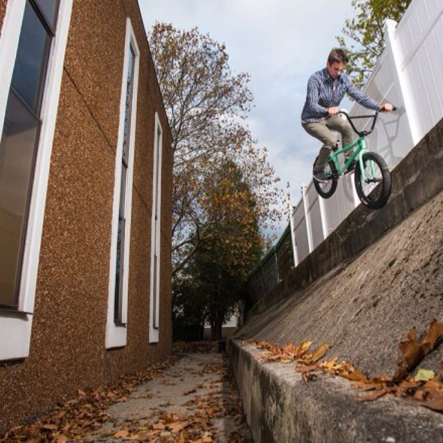 For all the homies in clifton @nathanbeddows  @animalbikes photo gallery