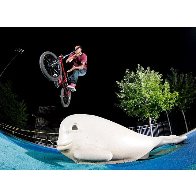 180 bars off the whale slide shot by @andrewgwhite