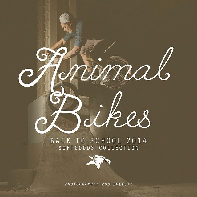 Back to school back to school @animalbikes @animalbikes