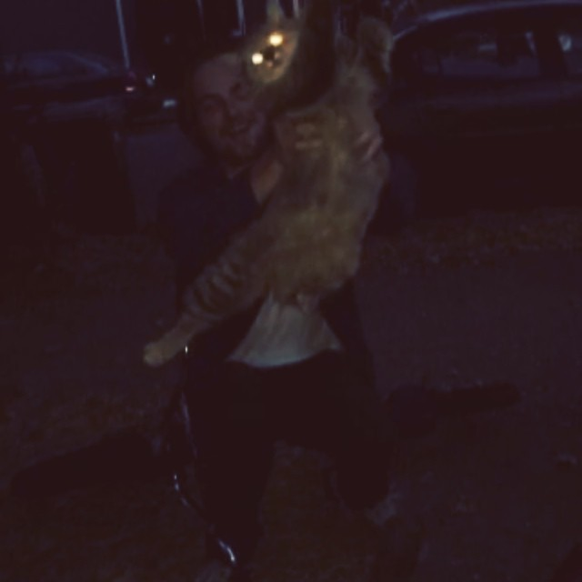 You ever just find a cat on the street
