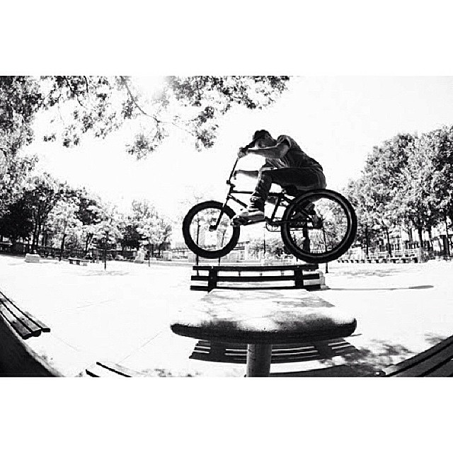 Brooklyn New York 2012 Harrison Boyce for the photo @animalbikes